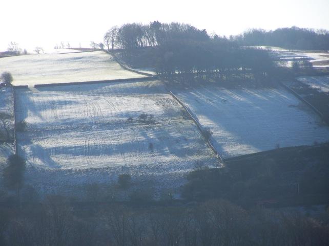 Winter sunshine  casting long shadows.